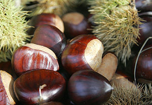 Chestnut Festival - Alpes-Maritimes