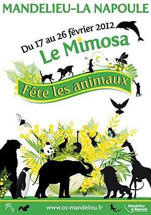 F te du mimosa mandelieu la napoule cotedazur tourisme - Office de tourisme mandelieu la napoule ...