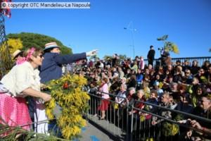 Fête du Mimosa - Mandelieu-La Napoule