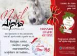 Venez passer un noël féerique au parc Alpha !