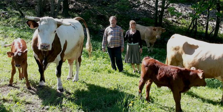 Gite a la ferme les louiqs c te d 39 azur gite a la ferme les louiqs - Entraunes office tourisme ...
