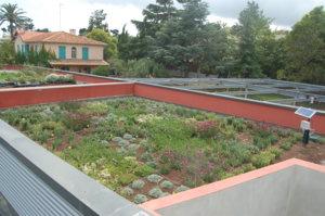 Jardin botanique de la villa thuret c te d 39 azur france for Jardin villa thuret antibes