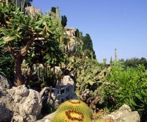 jardin exotique de monaco jardin exotique de monaco. Black Bedroom Furniture Sets. Home Design Ideas