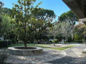 Jardins de la villa arson jardins de la villa arson for Jardin villa ratti nice